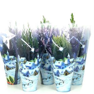 Afbeelding van  Coniferen Kerstmix blauwe hoes