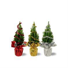 Afbeelding van Picea glauca Perfecta P15 - Rondella Tricolor